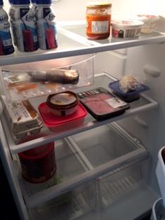 fridgefront