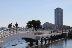 Foot bridge in public park