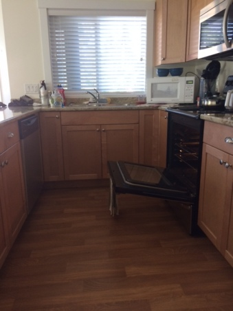 Kitchen cupboards with microwave over oven