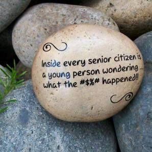"Picture of small rocks with the inscription ""Inside every senior citizen is a young person wondering what the #$%# happened!!"