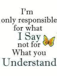 """A single jpeg with the wording """"I'm only responsible for what I say and not for what you understand"""" surrounding a butterfly"""